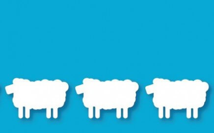 ovcice
